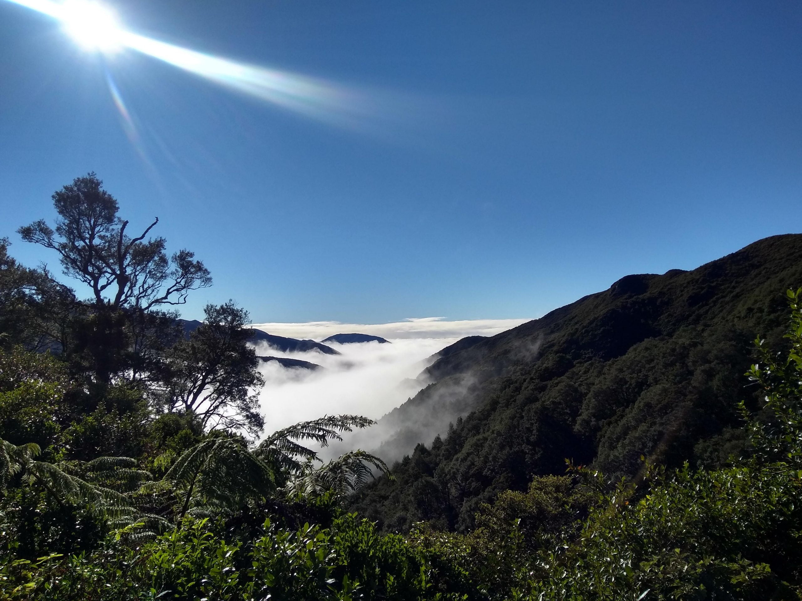 Clouds in the hills. Climate, Ecology, Unsustainable