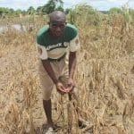 Cyclone Idai Devastates Southern Malawi