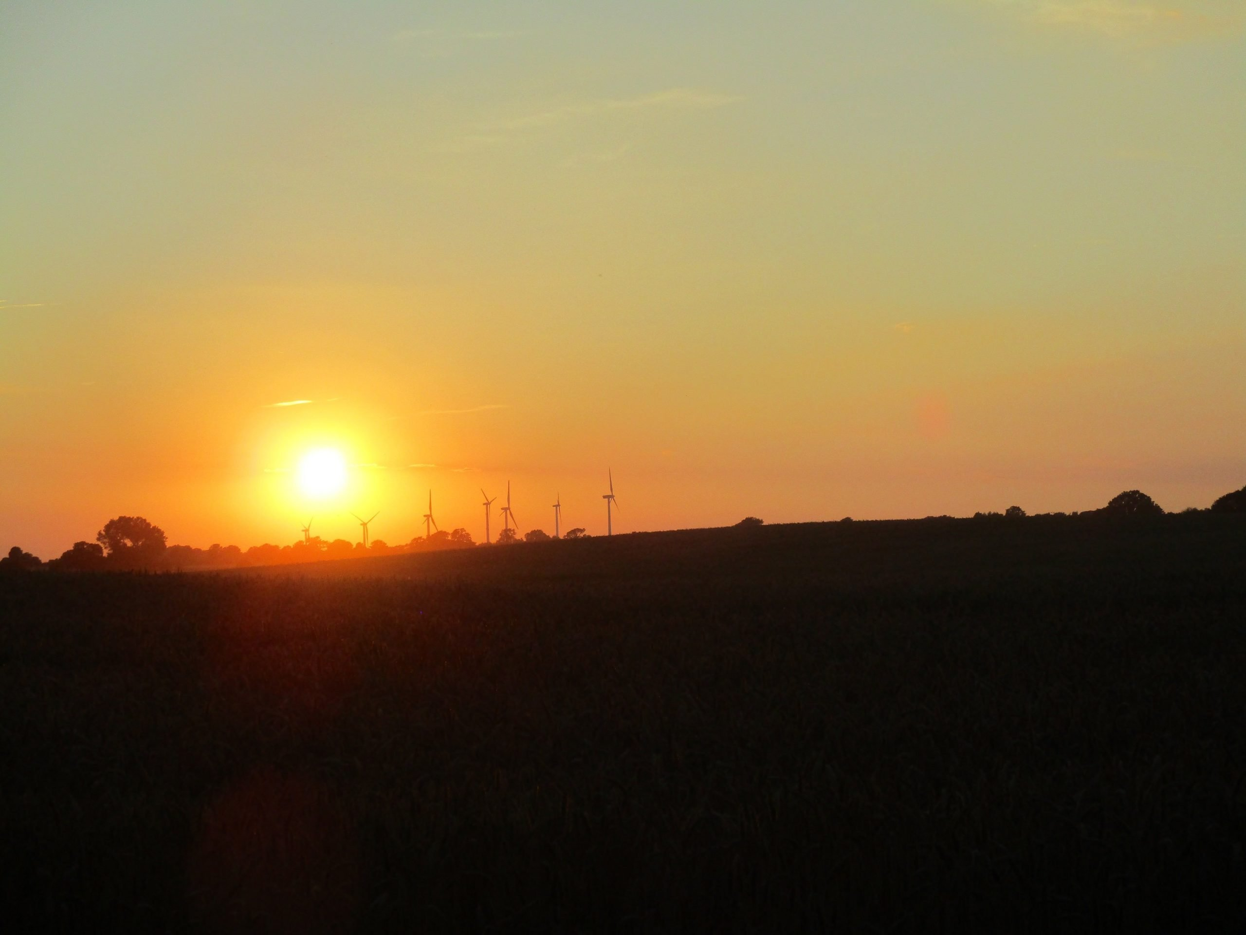 A Windfarm at Sunset