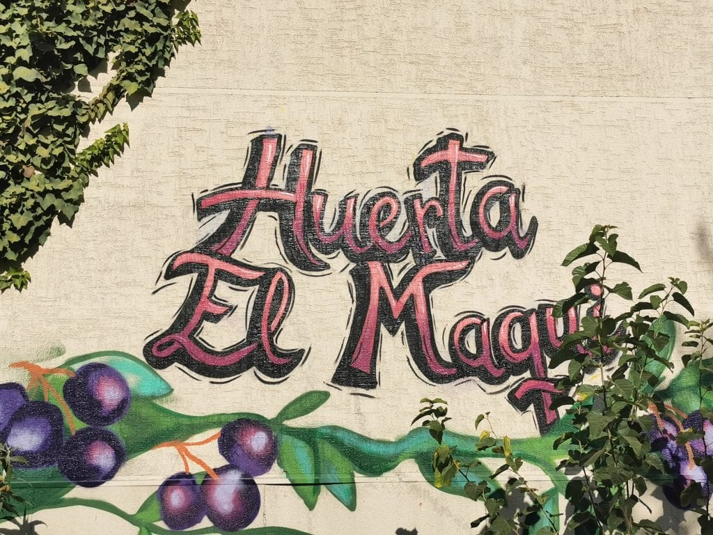 Mural on a wall that reads Huerta El Maqui, an example of community urban gardens