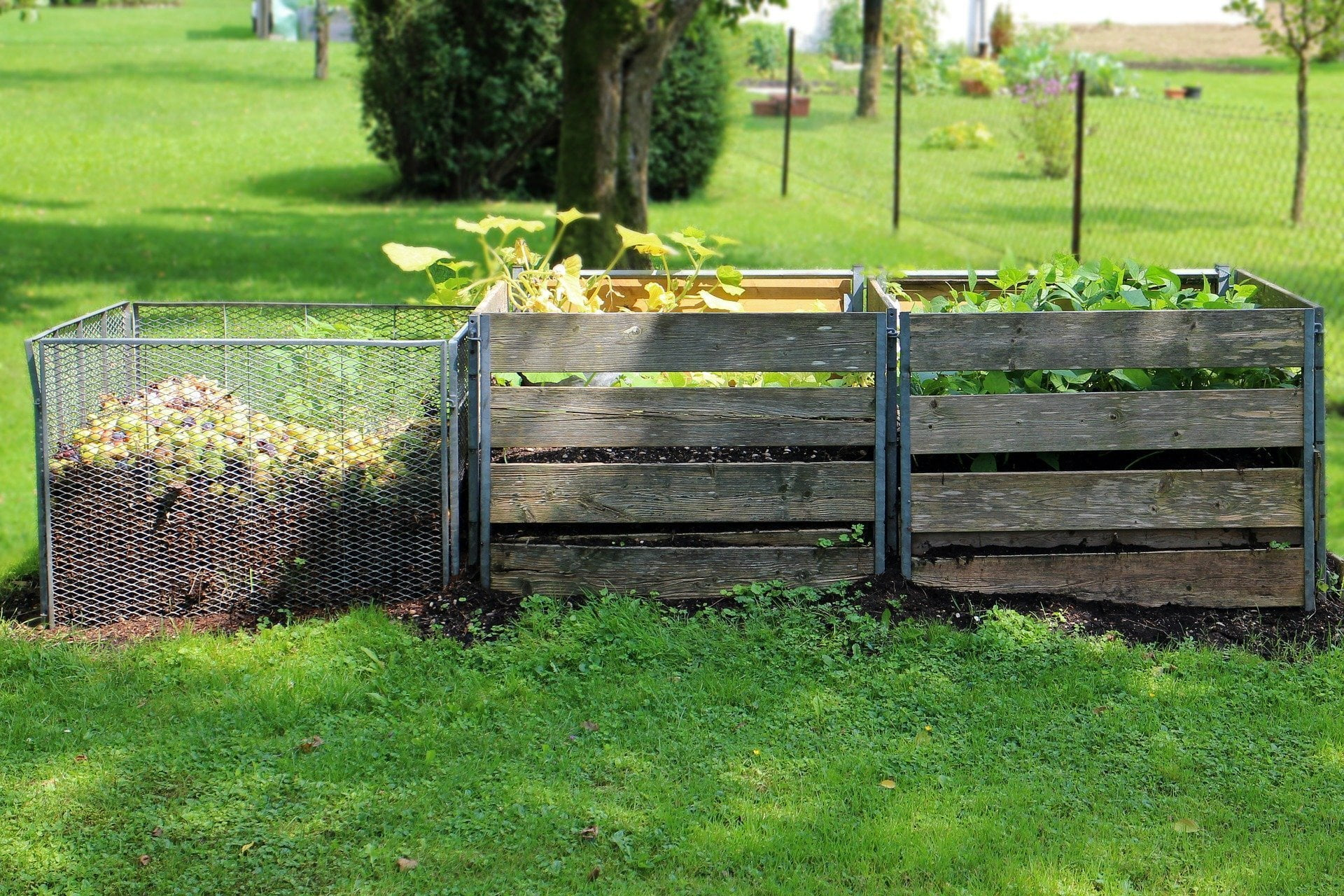 Full wooden compost bays in a row