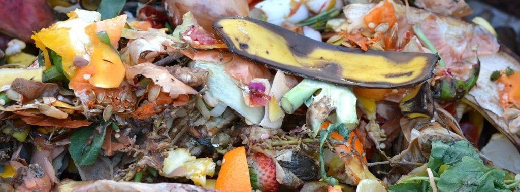 pile of food scraps, banana peel and strawberry tops visible