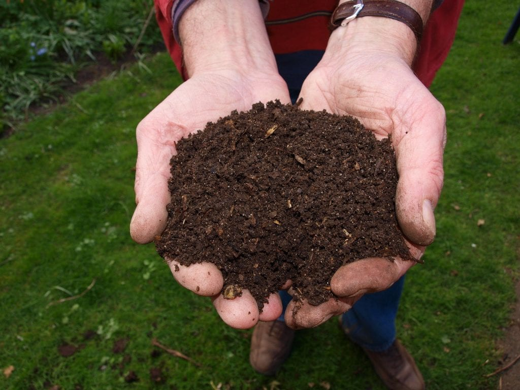 two hands holding a mound of rich brown compost