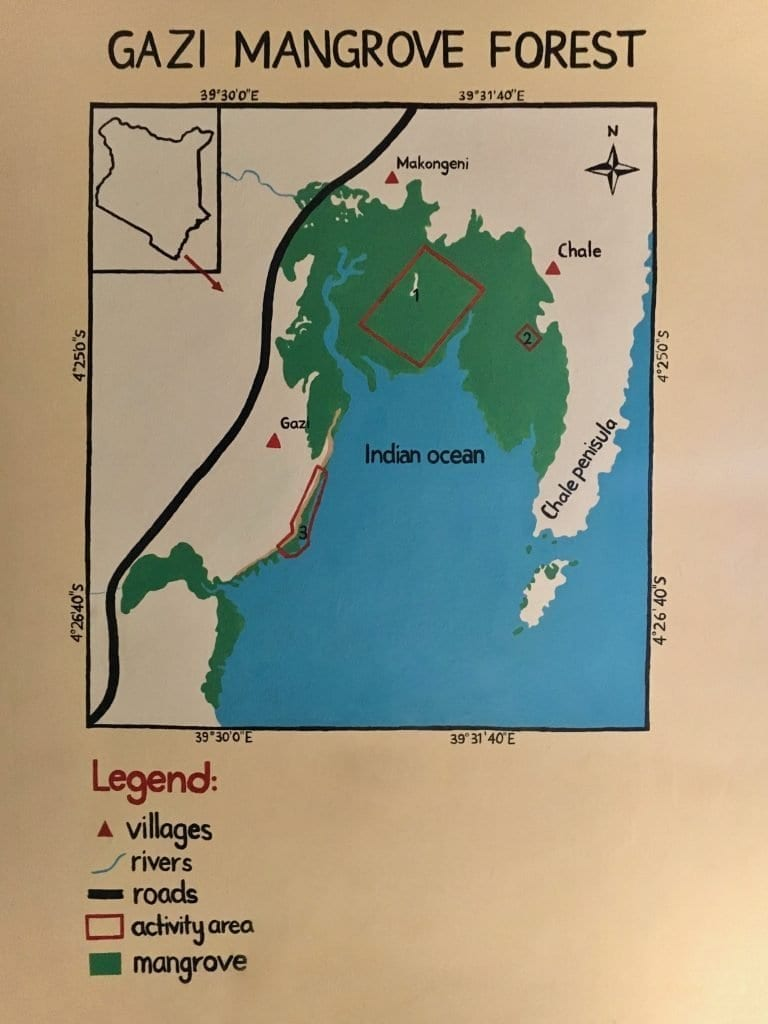 Hand drawn info-graphic of the Gazi Mangrove Forest