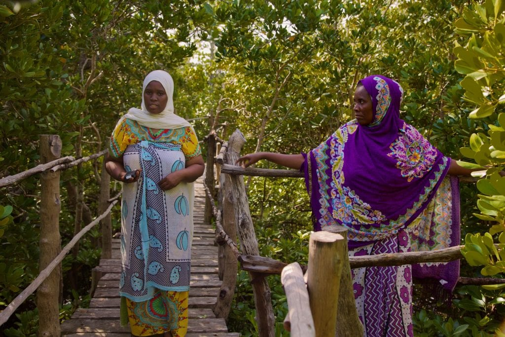 Members of Gazi women board walk at the boardwalk in Gazi, part of ecotourism mangrove restoration