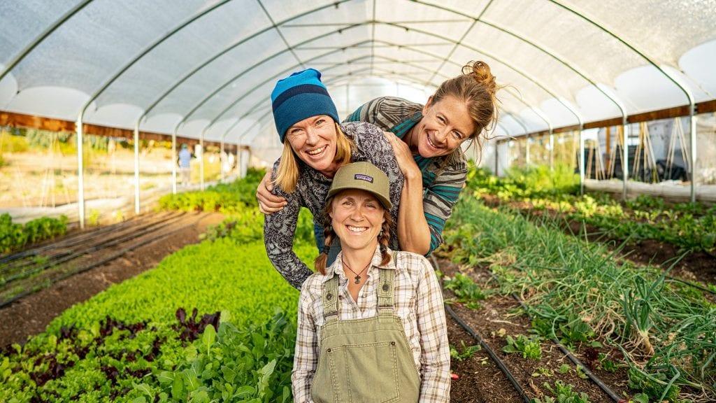 Happy gardeners in greenhouse