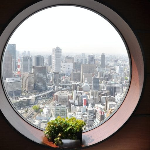 Osaka, Japan seen from inside a round window. Small plant on windowsill.