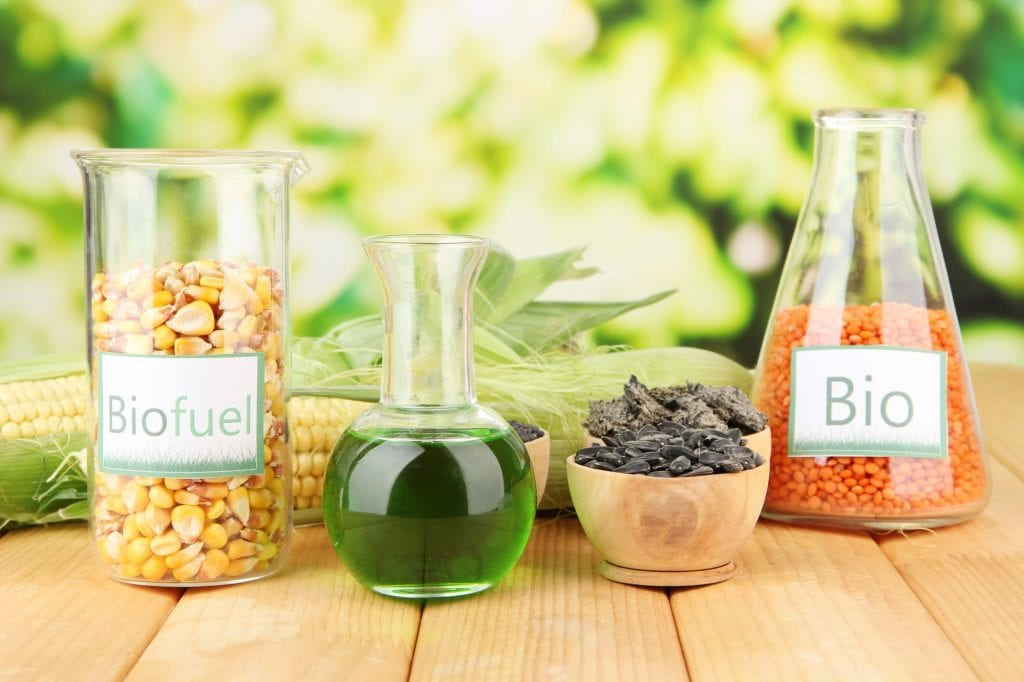 Vials containing biofuels