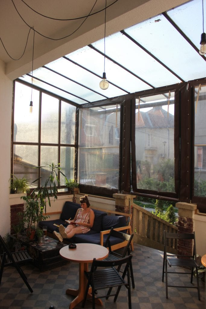 Green plants helping with indoor air quality