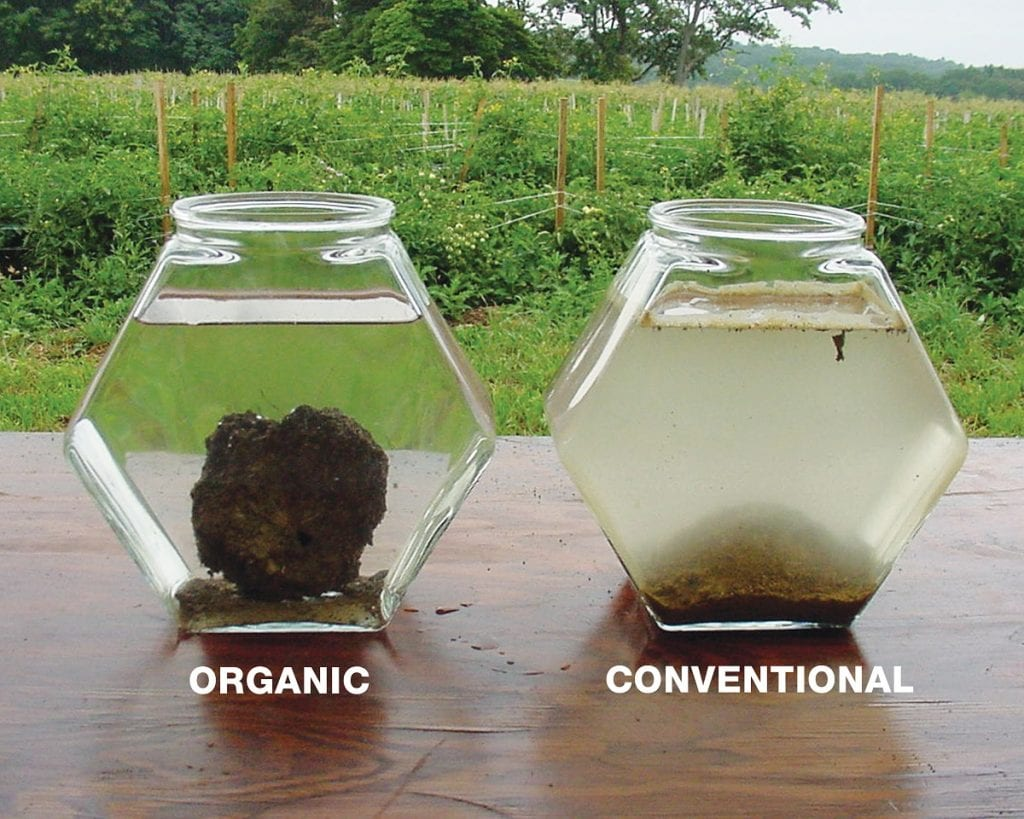 comparison of organic and conventional soil