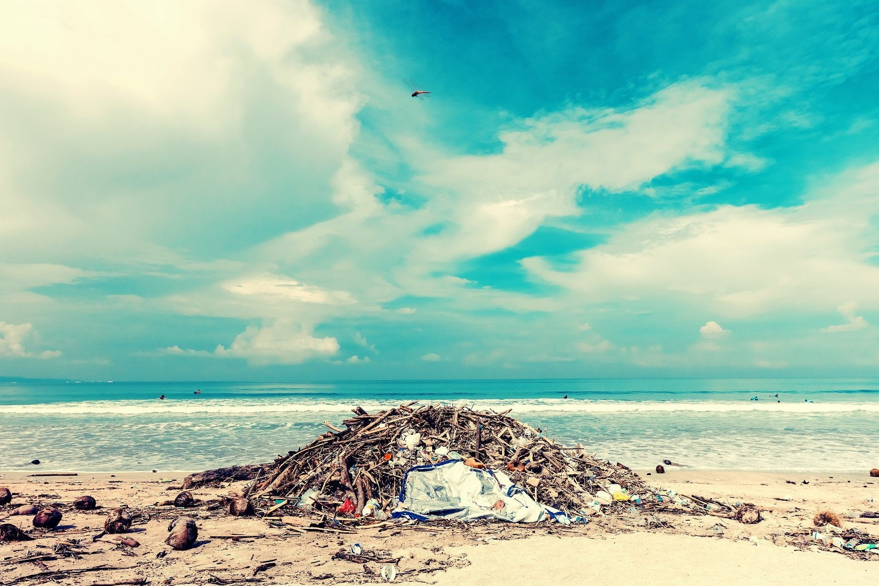 Warning: Oceans are Turning into Landfills