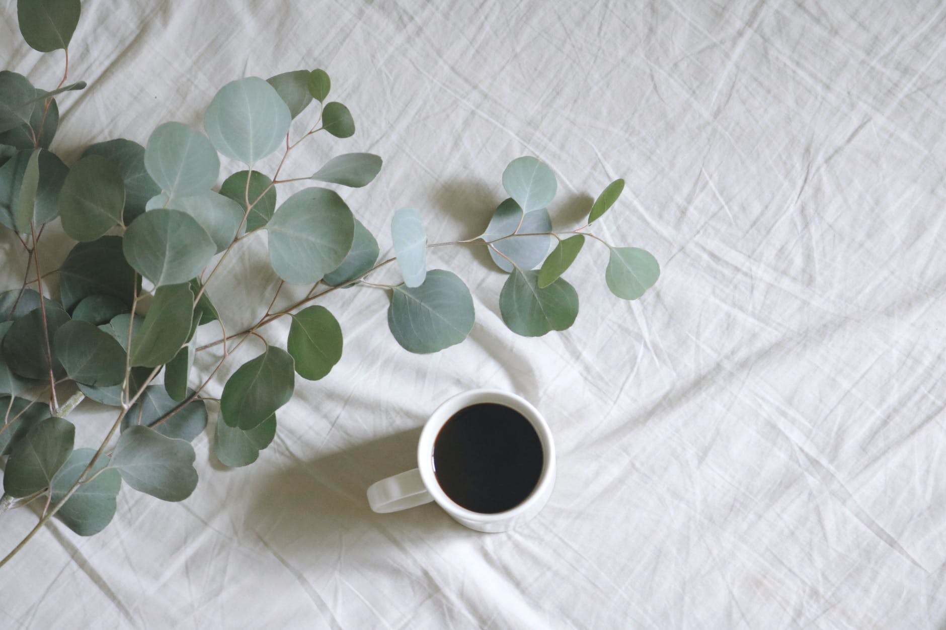 flat lay photography of white mug beside green leafed plants on linen, sustainable fabric