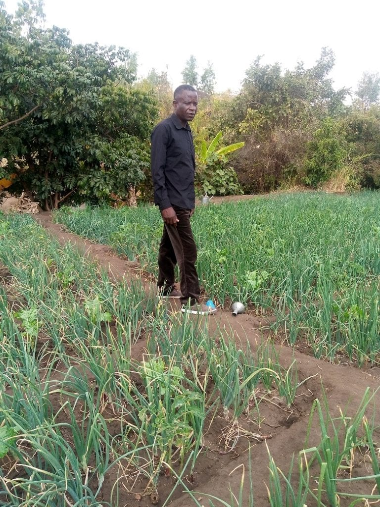 Covid-19 restrictions in Malawi: Man standing in green field