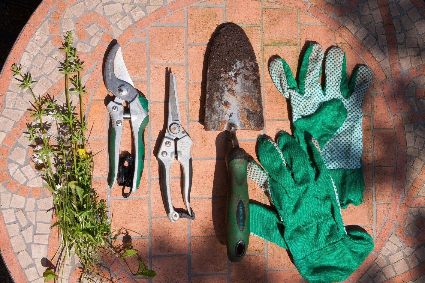 Most Essential Pieces of Gardening Equipment
