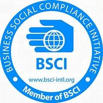 BSCI logo of sustainability organization