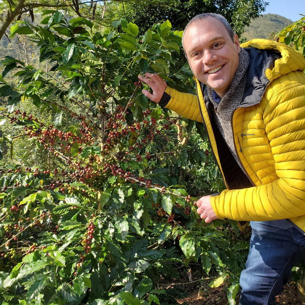 man wearing yellow jacket touching coffee plant