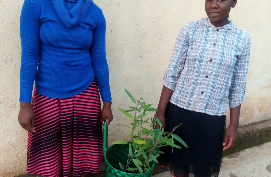 Malawi: Traditional Basketry Offering an Ethical and Cheap Alternative to Plastics