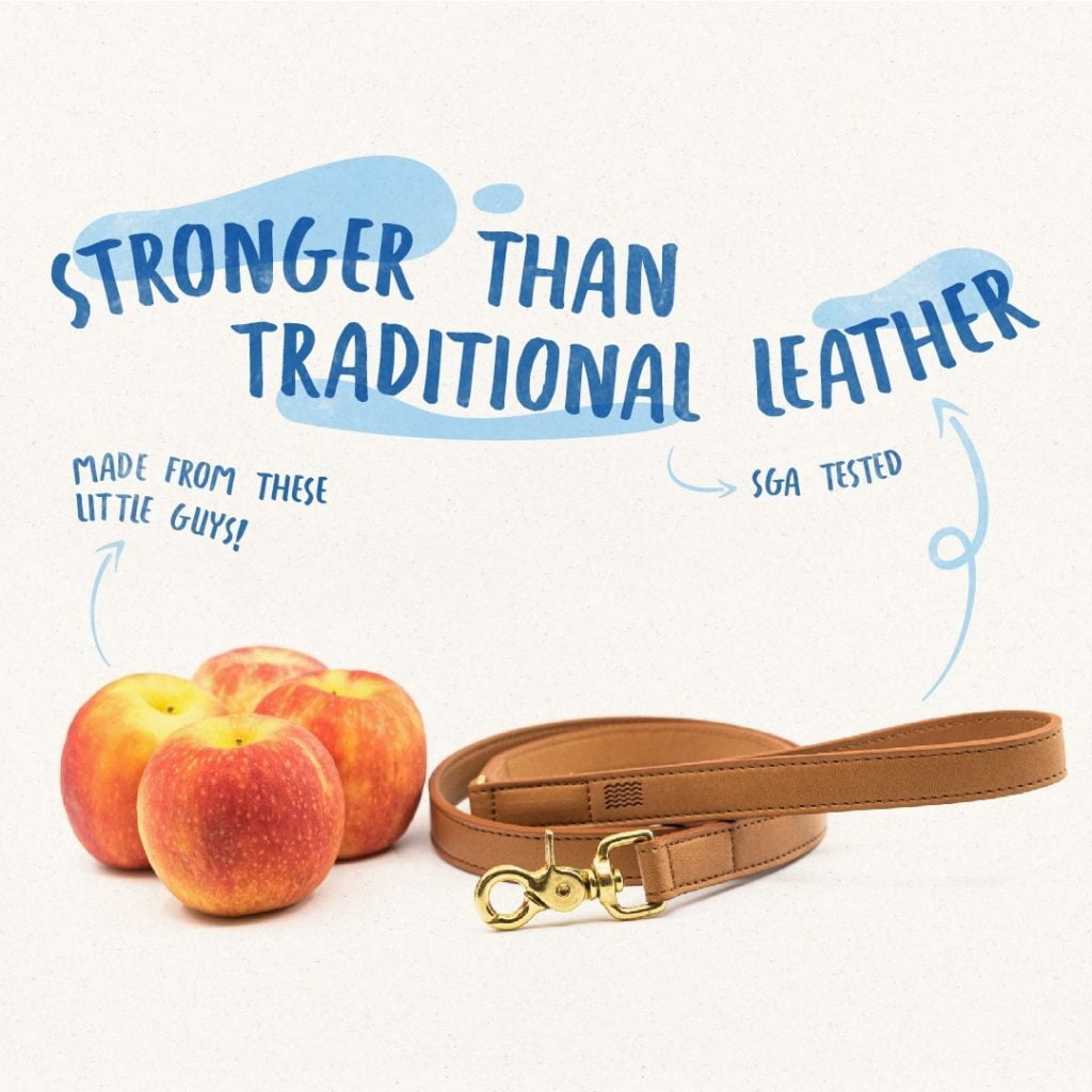 apples, belt, stronger than traditional leather