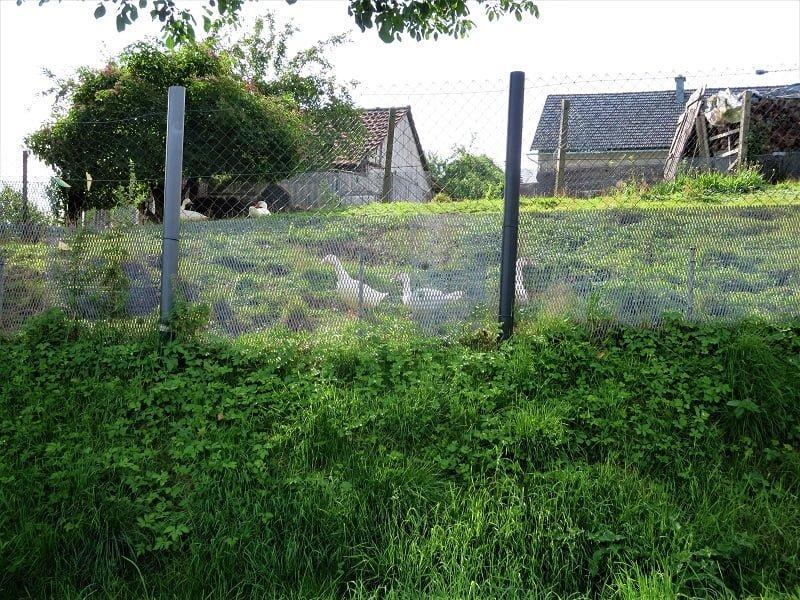 Iron Curtain Trail 32