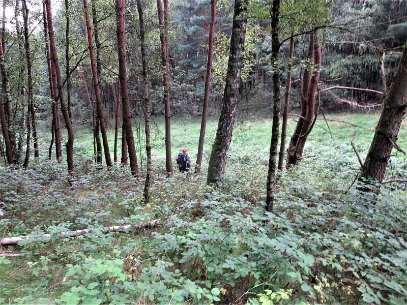 Iron Curtain Trail 37