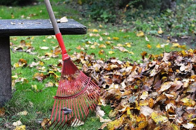 raking up leaves, staying healthy with physical jobs like yardwork