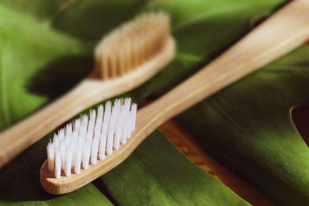Zero Waste Sustainable Home Toothbrush