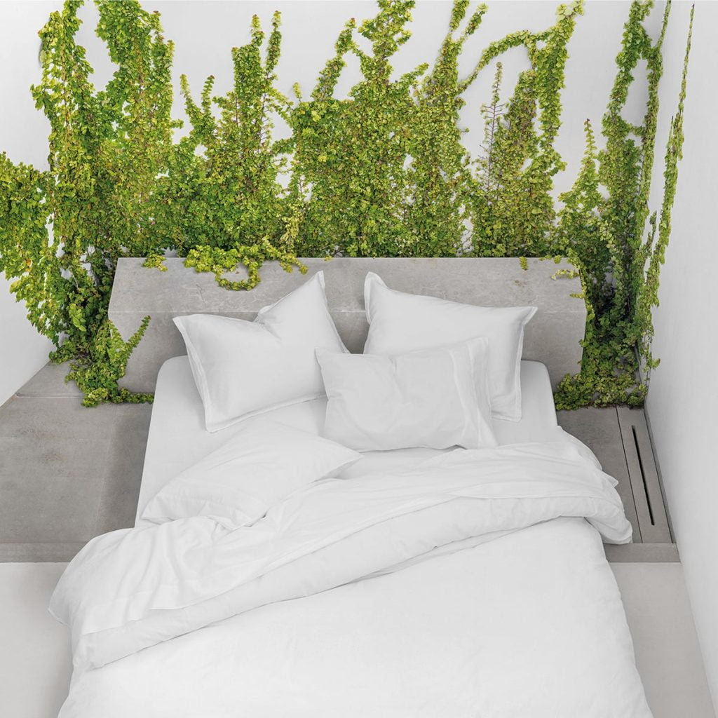bed with vines gowing up wall behind