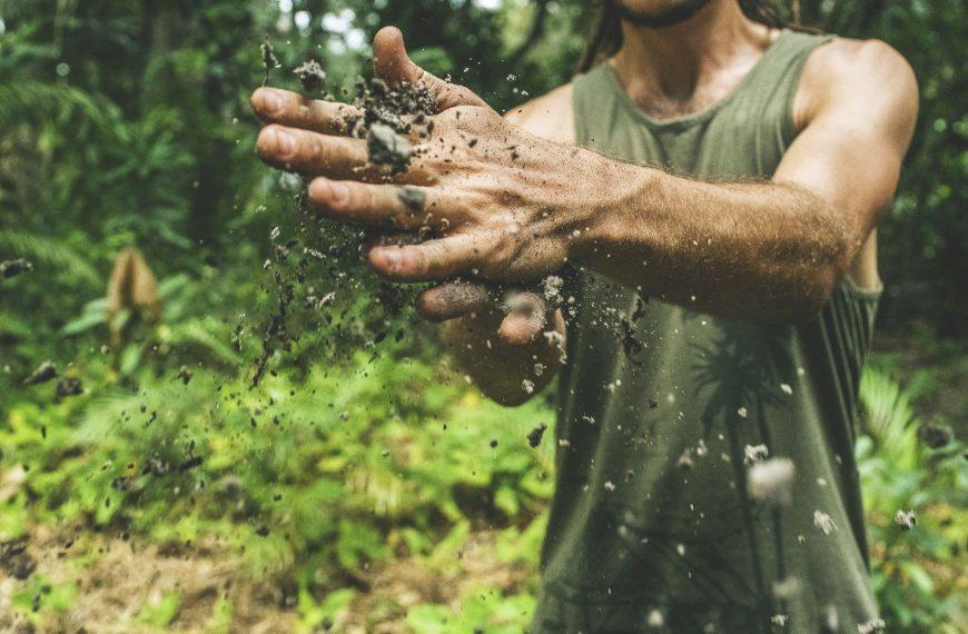 Nature's Composting Secret: How This Ancient Practice Eliminates Carbon Emissions